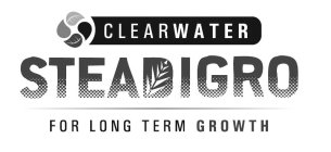 CLEARWATER STEADIGRO FOR LONG TERM GROWTH