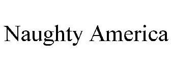 naughty america categories