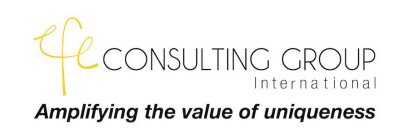 EFE CONSULTING GROUP INTERNATIONAL AMPLIFYING THE VALUE OF UNIQUENESS