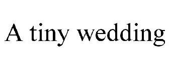 A tiny wedding