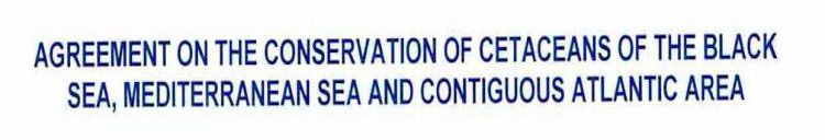 AGREEMENT ON THE CONSERVATION OF CETACEANS OF THE BLACK SEA, MEDITERRANEAN SEA AND CONTIGUOUS ATLANTIC AREA