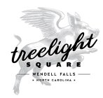 TREELIGHT SQUARE WENDELL FALLS NORTH CAROLINA